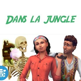 Dans la Jungle : Vid�os exclusives !!