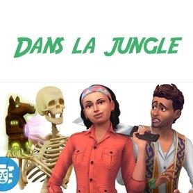 Dans la Jungle : Vidéos exclusives !!