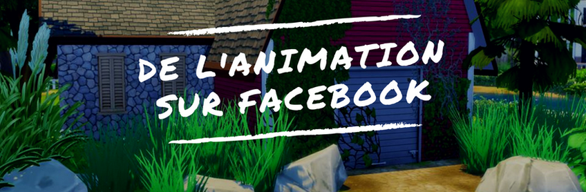 De l'animation sur Facebook