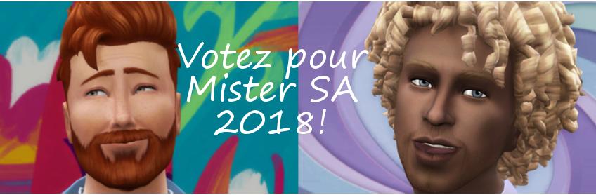 Mister SA 2018 : l'élection