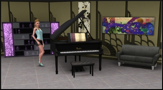 acces vip mode achat construction cas piano à queue tableau étagère