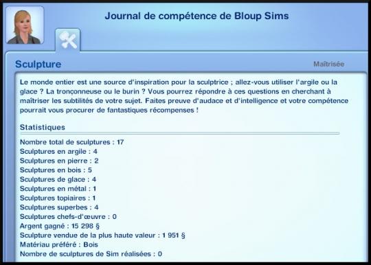 5 sims 3 ambition sculpture journal competence suivi