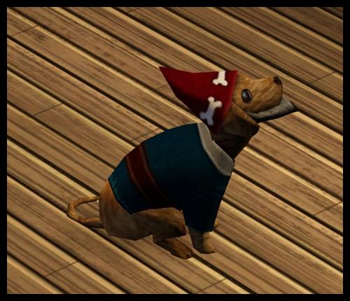 chien_gnome