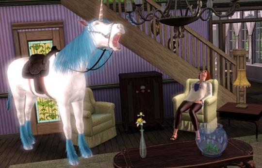 interview licorne licorne hennit dans le studio