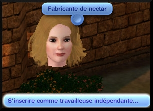 45 sims 3 destination aventure fabrication nectar interaction hotel de ville fabricant independant