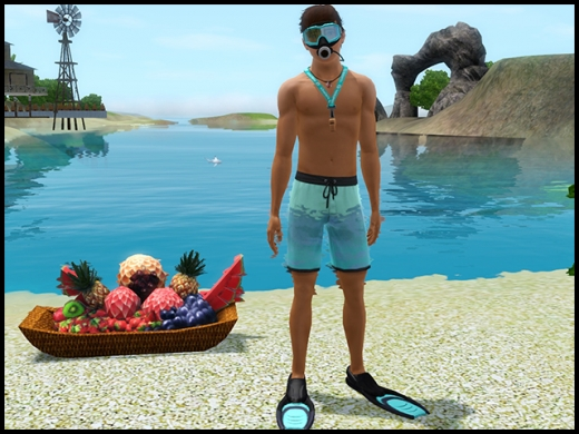 île de rêve plongée homme
