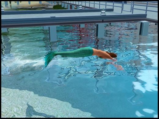 Sirène olympique pour piscine