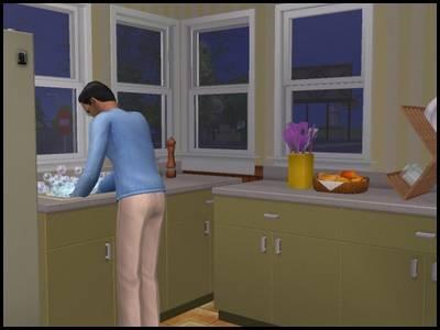 montsimpa sims 2 famille dourève darren cuisine vaisselle