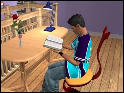 montsimpa sims 2 famille dourève dirk étudier livre sérieux ambition richesse