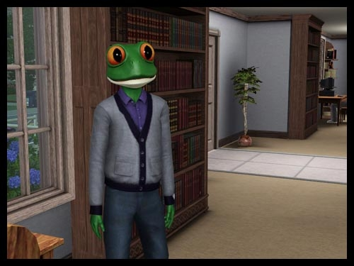8 sims 3 interview sorciere super pouvoir crapaudifie