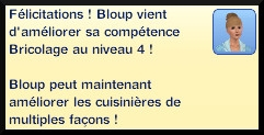 5 sims 3 competence bricolage message niveau 4