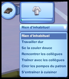 culinaire7