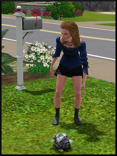 7 sims 3 collection pierre metal insecte ramasse pierre