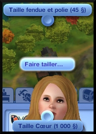 15 sims 3 collection pierre metal insecte taille pierre precieuse fleche