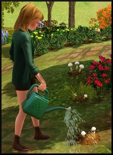 5 sims 3 competence jardinage Bloup arrose arrosoir