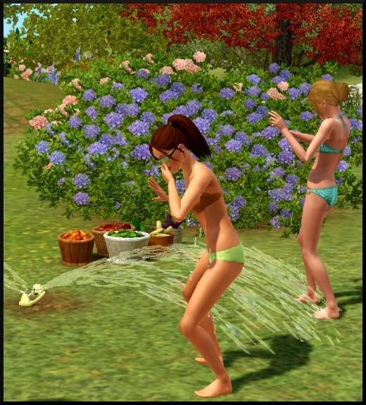 8 sims 3 competence jardinage Bloup Nat arrosage automatique jeu