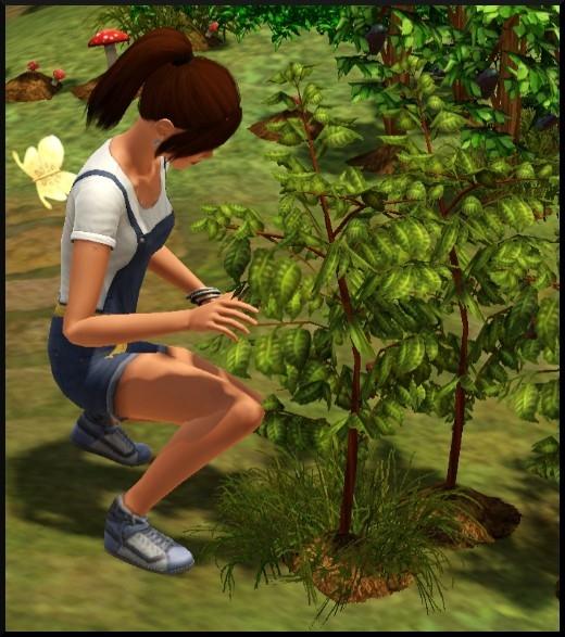 9 sims 3 competence jardinage Nat desherbe mauvaises herbes