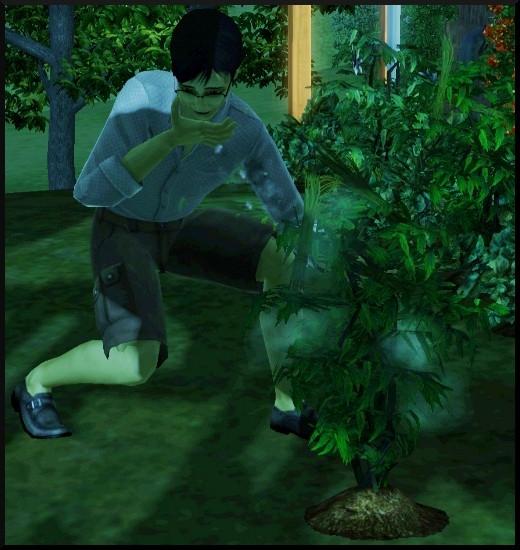 17 sims 3 competence jardinage zombie dévore plante pleine lune super pouvoir