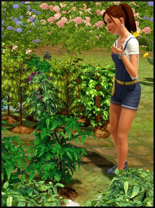 26 sims 3 competence jardinage parler à une plante