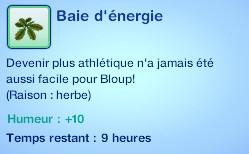 Sims 3 compétence jardinage moodlet baie energie