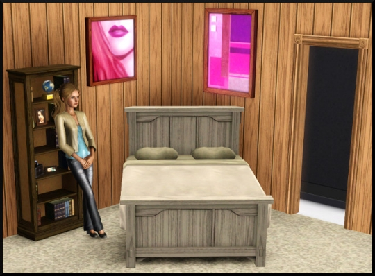 55 sims 3 mode achat construction chambre