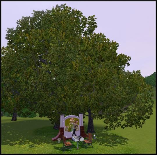 66 sims 3 mode achat construction jardin