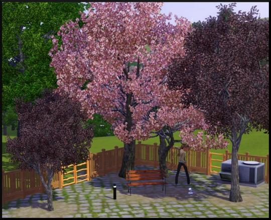 70 sims 3 mode achat construction jardin