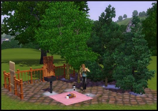 72 sims 3 mode achat construction jardin