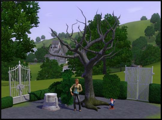 73 sims 3 mode achat construction jardin