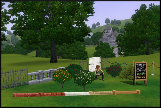 77 sims 3 mode achat construction jardin
