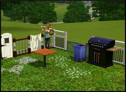 79 sims 3 mode achat construction jardin
