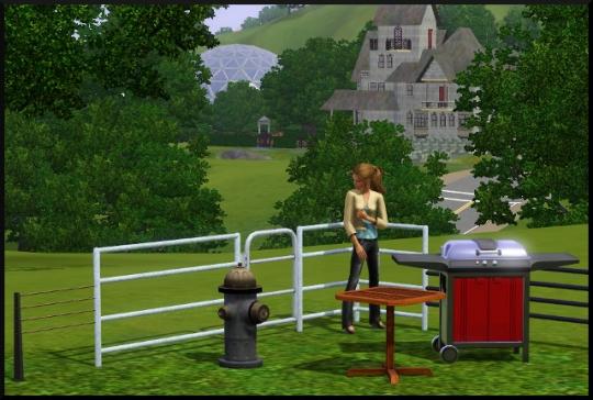 80 sims 3 mode achat construction jardin