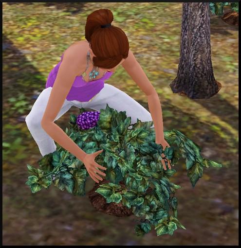 7 sims 3 carriere scientifique medecine jardinage