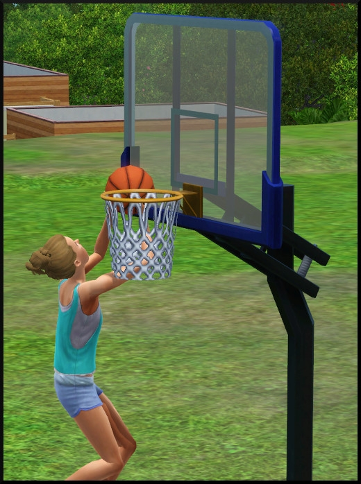 9 sims 3 store collection niveau superieur panier basket
