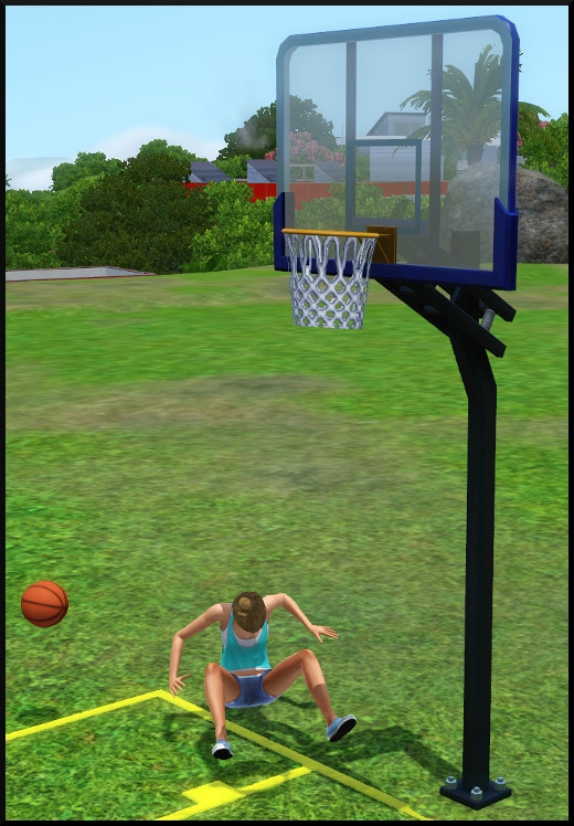 10 sims 3 store collection niveau superieur panier basket