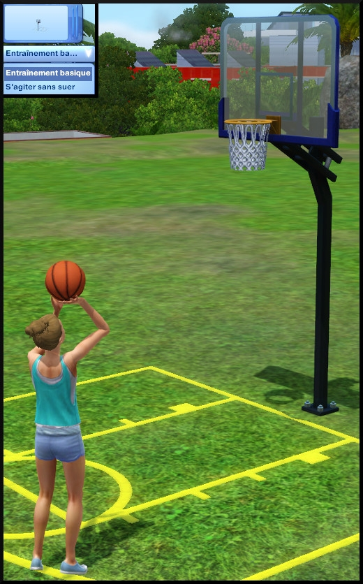 11 sims 3 store collection niveau superieur panier basket