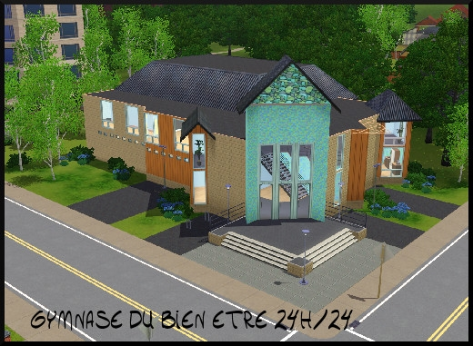 34 sims 3 sunset valley gymnase bien etre