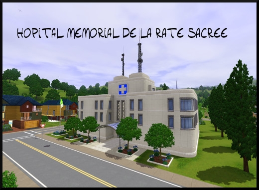 45 sims 3 sunset valley hopital memorial de la rate sacree