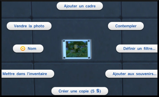 7 sims 4 photographie competence photo au mur interactions option