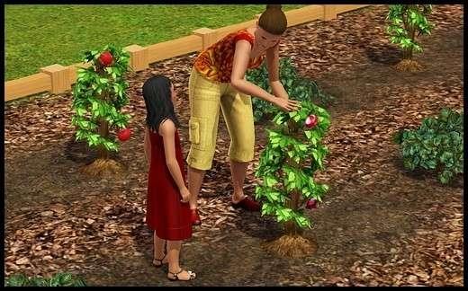 9 famille gothik sims 3 sunset valley sonia jocaste galantome jardin potager
