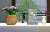 Set Floral