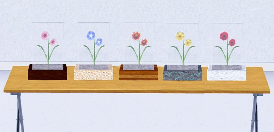 Fleur sous verre