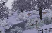 Parc hiver 4