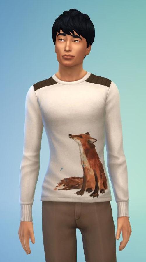 Pull aquarelle renard