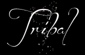 Set tatouages tribal femme
