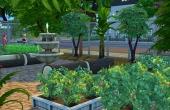 Jardins - Plantation