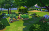 L'amaryllis vue extérieure arriere jardin potager