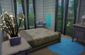 L'amaryllis chambre