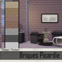 Briques Picardie  Rouge Fonc�