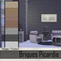 Briques Picardie Gris foncé